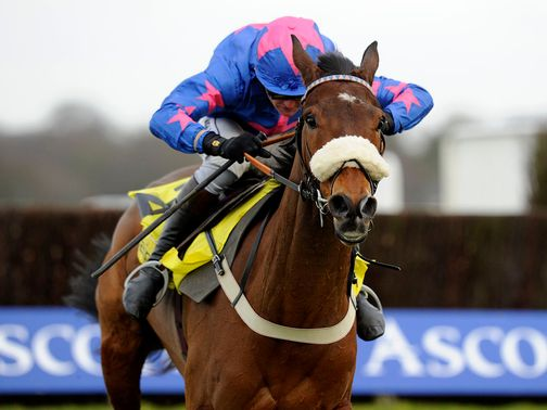 Cue Card: Ultimately an easy winner of the Ascot Chase