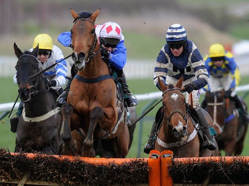 Oscar Whisky (r): Not yet committed to the World Hurdle
