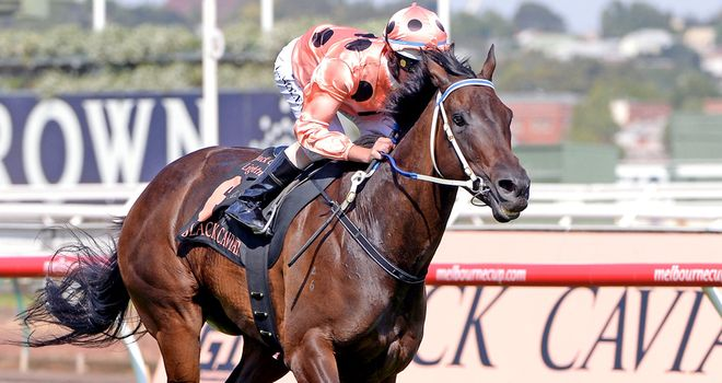 Black Caviar: Six-year-old still unbeaten