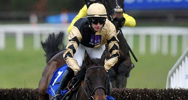 Boston Bob; Second chase victory comes in Grade 1 company - next stop Cheltenham?
