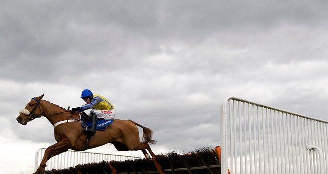 Up And Go: Set for Aintree before switch to fences