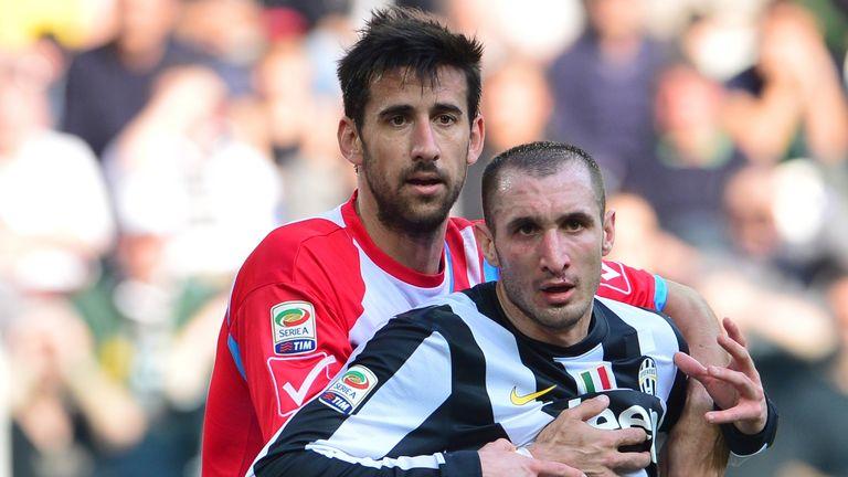 Nicolas Spolli (left): Claims Tottenham wanted him