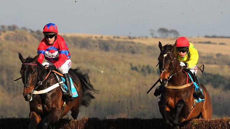Sizing Europe (right) may not reoppose Sprinter Sacre (left) at Punchestown