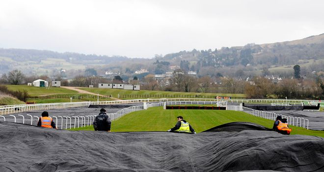 Cheltenham officials out covering the track on Sunday