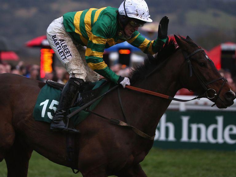 Alderwood: Unlikely to head to Prestbury Park this year