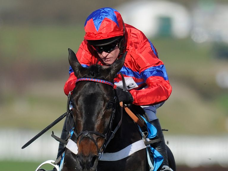 Sprinter Sacre: One of the greats say Timeford