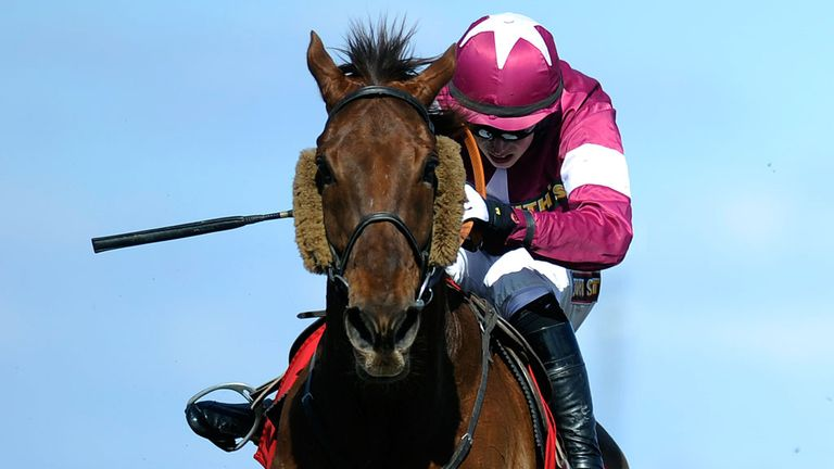 First Lieutenant: Cheltenham aim yet to be decided