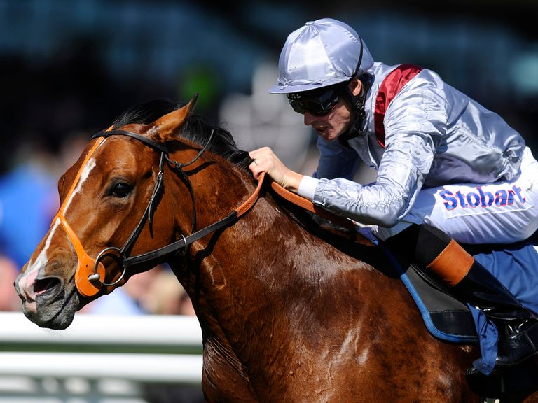 Olympic Glory: Will represent Hannon team in the Breeders' Cup Mile