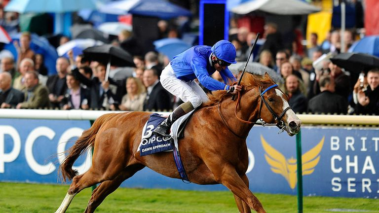 Dawn Approach: favourite for the Derby