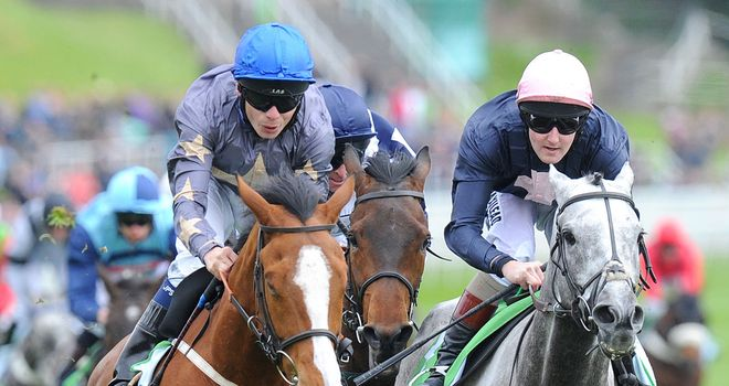 Address Unknown (blue cap): Bids to sign off in style in the Northumberland Plate