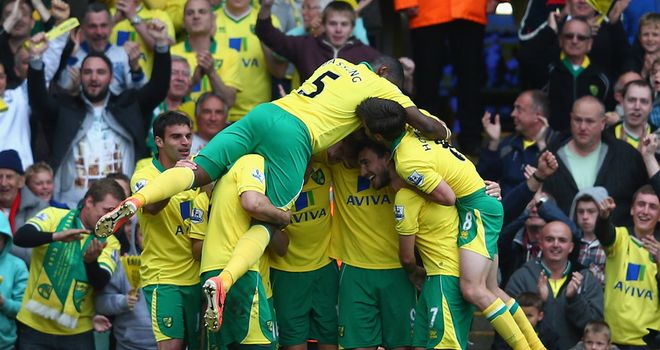 Norwich secured their Premier League survival with a fine performance