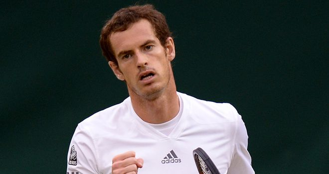 Andy Murray: Making superb progress at Wimbledon