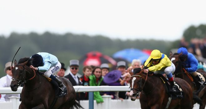 Opinion: Big Ebor fancy