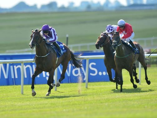 Darwin beats Gordon Lord Byron at the Curragh