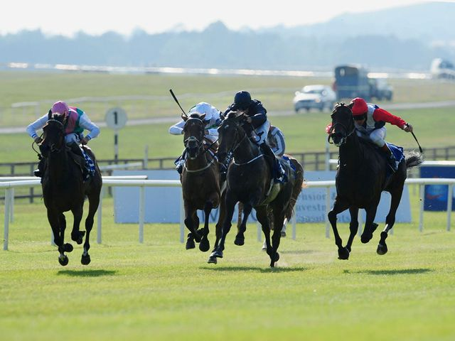 Venus De Milo (centre): York hopeful