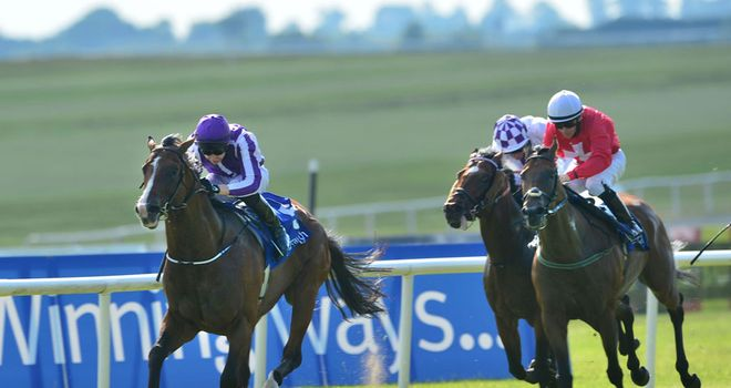 Darwin: An impressive winner of the Minstrel Stakes