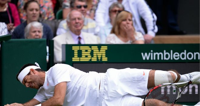 Juan Martin del Potro: Recovered from a nasty fall in the first game of the match