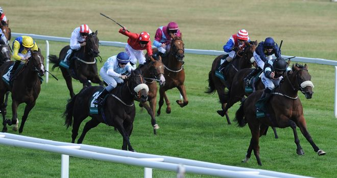 Peniaphobia flashes past Oasis Town en route to Super Sprint glory