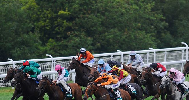 Viewpoint: Could put in an appearance at the Shergar Cup