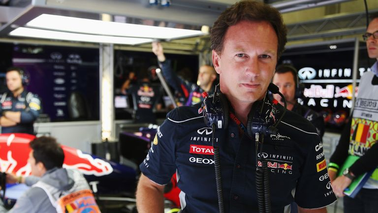 Christian Horner: Admires Daniel Ricciardo's racecraft too