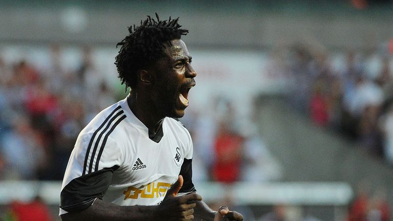 Wilfried Bony: Hoping Michu stays at Swansea
