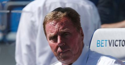 Harry Redknapp: Keen to keep Niko Kranjcar