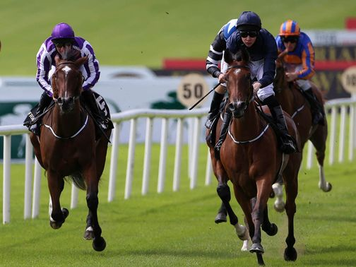 Tapestry (right): Moyglare selection