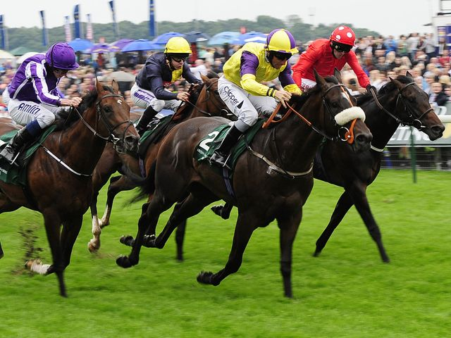 Astaire holds on in the Gimcrack
