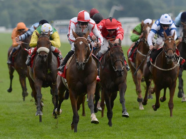 Tiger Cliff wins the Ebor under Queally