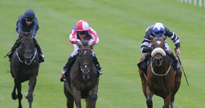 Royal Diamond: Gained revenge on old rival Ernest Hemingway at the Curragh