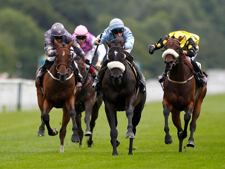Chancery: Worth a bet at Haydock
