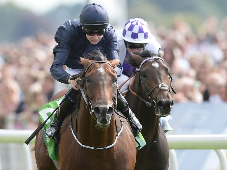 Declaration Of War: Joseph O'Brien's only Breeders' Cup ride