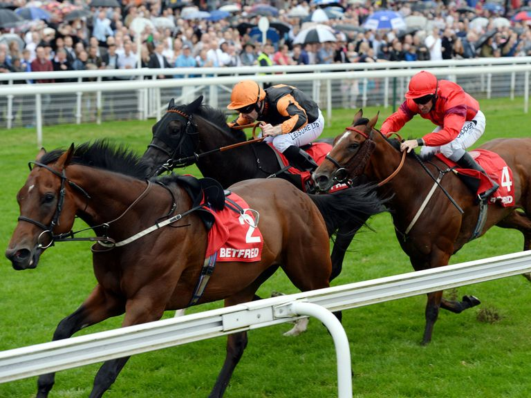 Rex Imperator (red silks): Worth a bet at Haydock