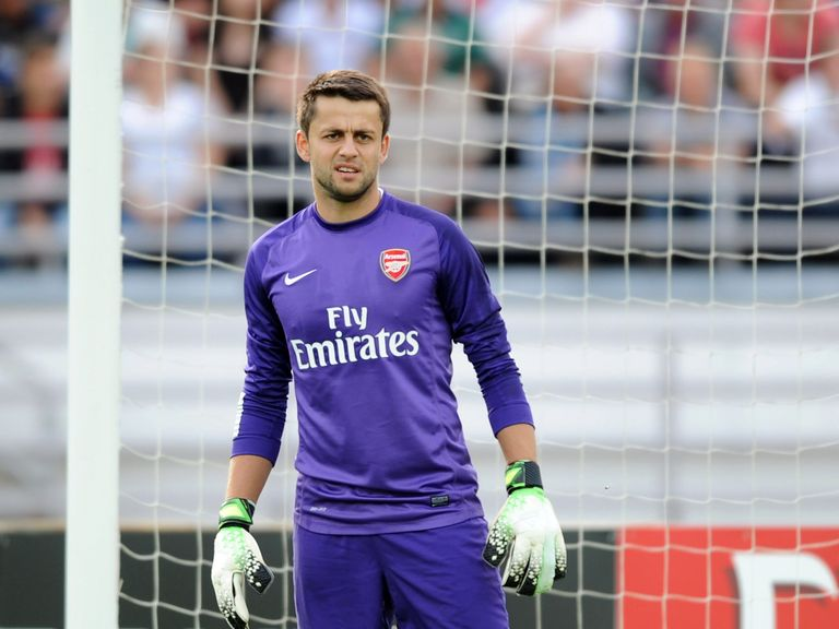 Lukasz Fabianski: Set to leave Arsenal this summer