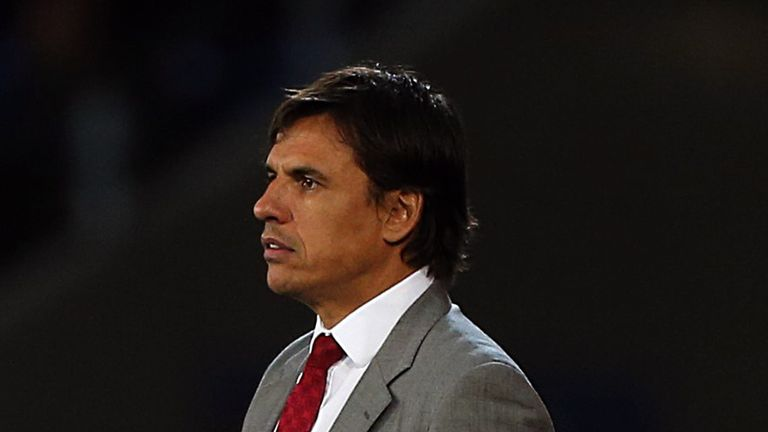 Chris Coleman: Among the favourites for the vacant managerial position at Selhurst Park