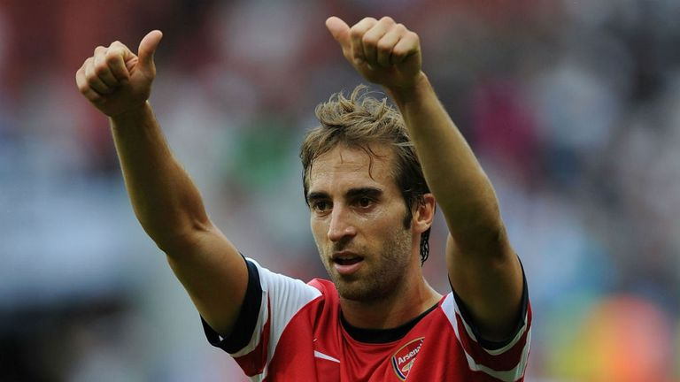 Mathieu Flamini: Is delighted to be back playing for Arsenal