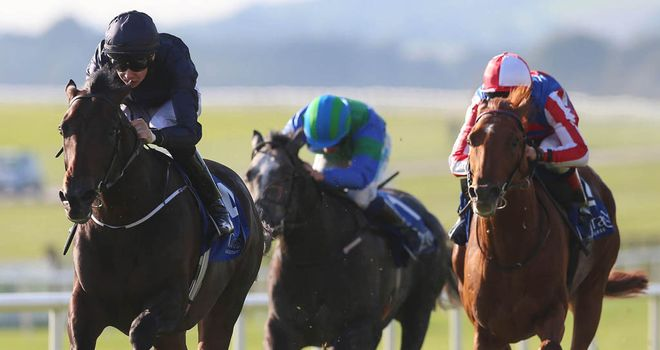 Geoffrey Chaucer: Possible runner in the Ballysax