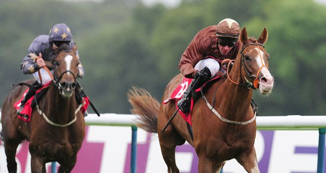 Top Notch Tonto: Set to make reappearance at Sandown