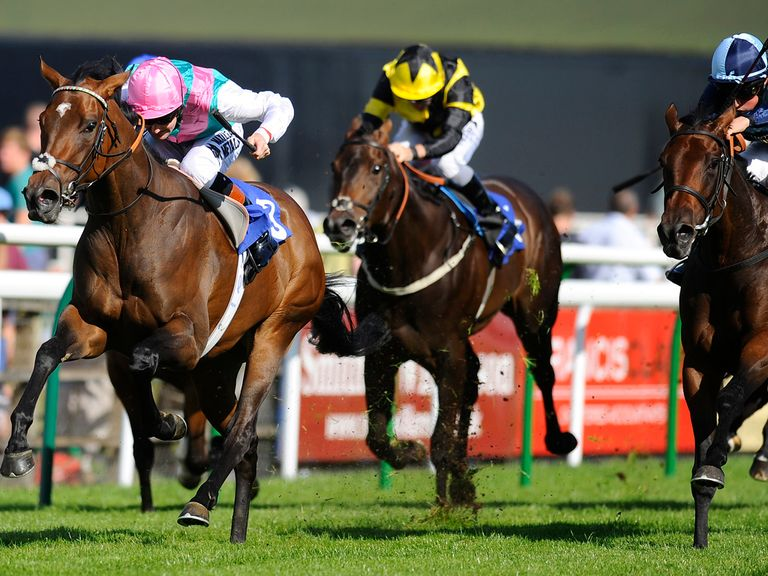 Joyeuse: Worth a bet in the Guineas