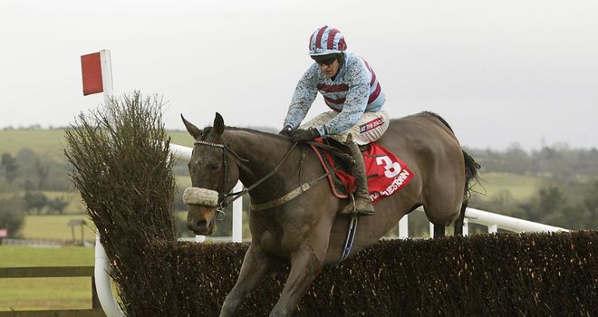 Rubi Light: Clonmel hopeful