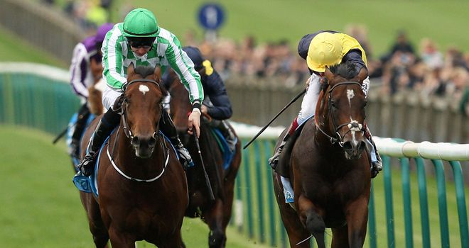 War Command: Irish 2000 his next target after Newmarket defeat