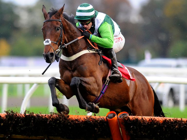 Rock On Ruby: Cracking each-way bet in the Arkle