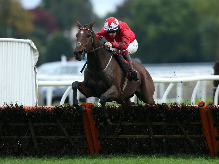 The New One: Our pick to land the Champion Hurdle on Tuesday