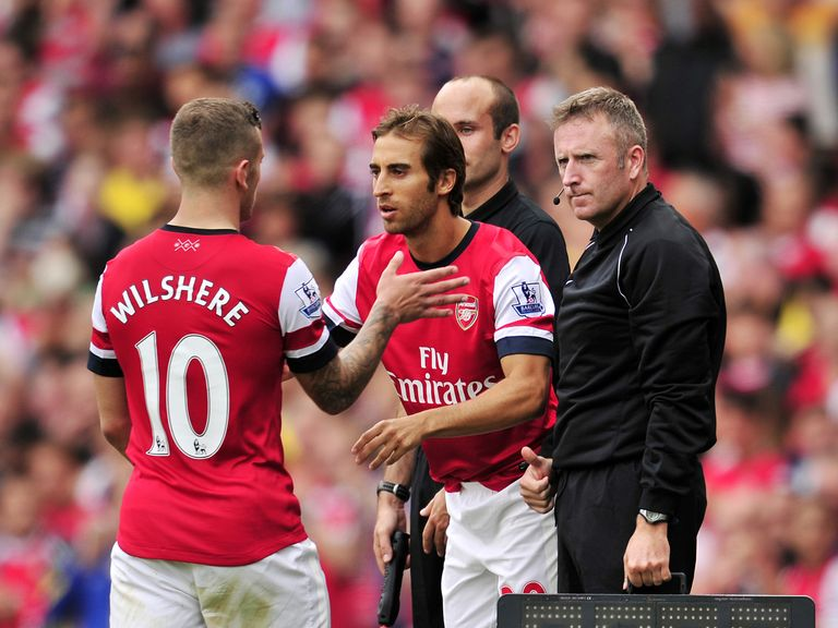 Mathieu Flamini: Has offered his backing to Jack Wilshere