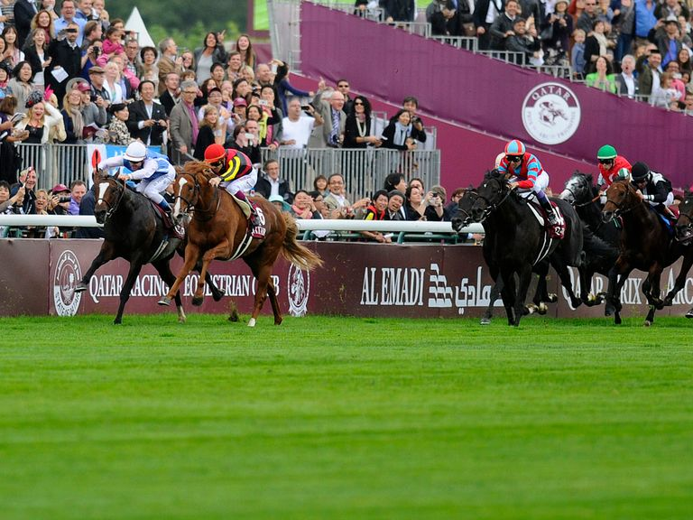 Orfevre and Intello lead the chasing pack - but Treve has long flown