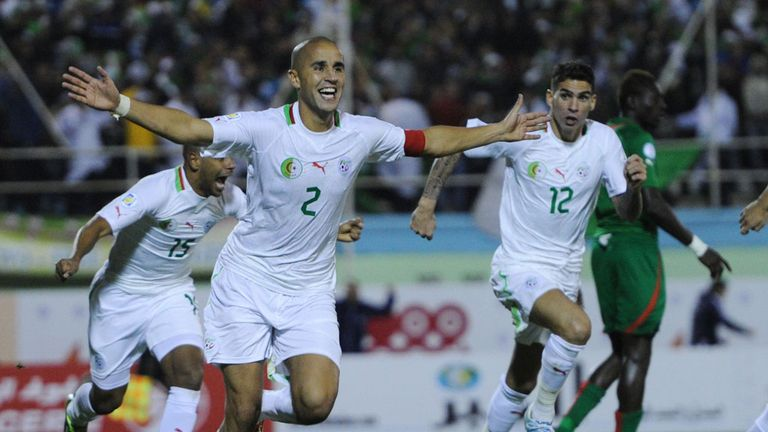 Madjid Bougherra: Celebrates scoring during Algeria's second-leg win