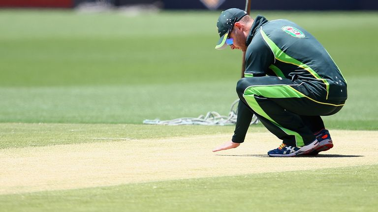 Michael Clarke: Inspects the pitch at the Gabba