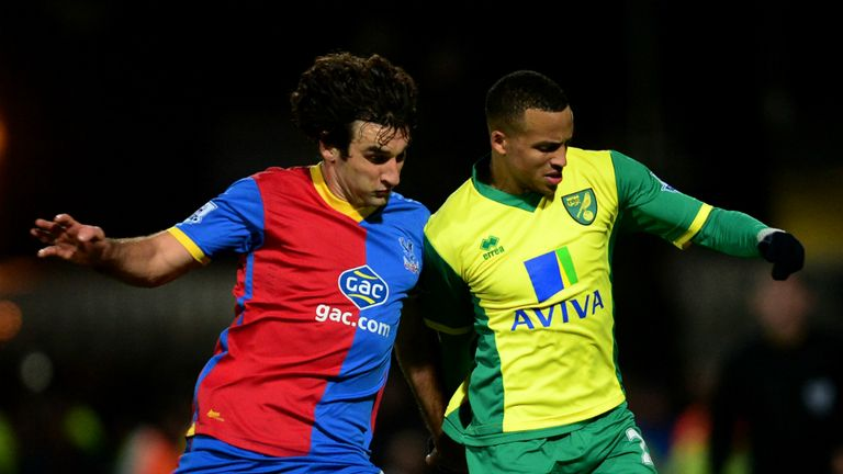Mile Jedinak (left): Taking the positives from Crystal Palace's defeat at Norwich