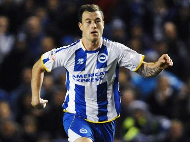 Ashley Barnes: Scored for Brighton