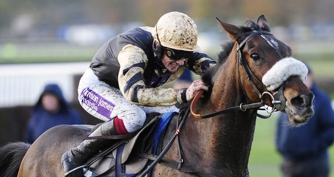 Tidal Bay: Reunited with Ruby Walsh at Leopardstown